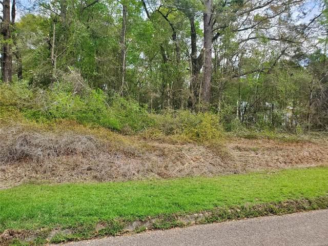 000 Holt Lane, Daleville, AL 36322 (MLS #491868) :: Team Linda Simmons Real Estate