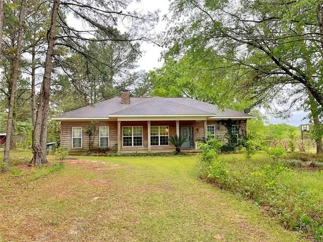 4943 E Highway 134, Midland City, AL 36350 (MLS #492135) :: Team Linda Simmons Real Estate