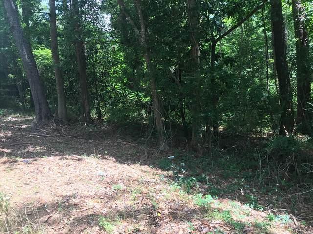 TDB County Road 69, Hartford, AL 36375 (MLS #496618) :: Team Linda Simmons Real Estate