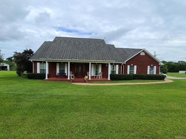 4429 County Road 36 Road, Hartford, AL 36344 (MLS #498749) :: Buck Realty