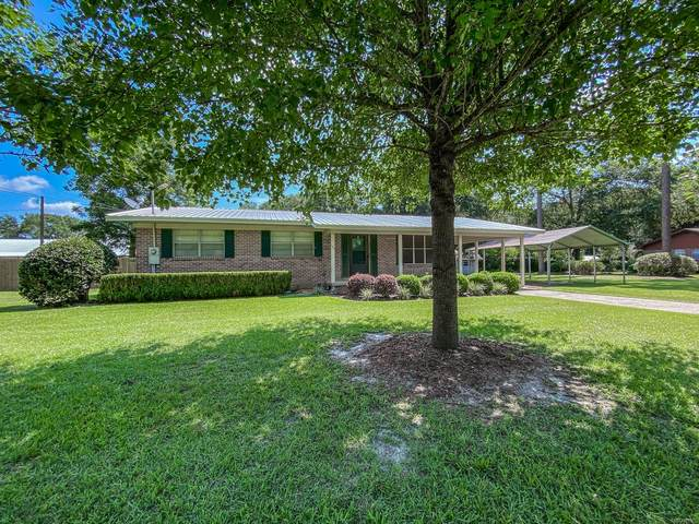 151 Lindsey Lane, Geneva, AL 36340 (MLS #499523) :: Team Linda Simmons Real Estate
