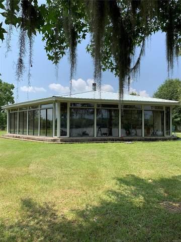 85 Newport Road, Lowndesboro, AL 36752 (MLS #499601) :: Buck Realty