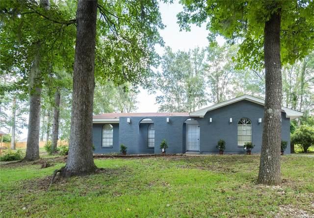 10625 Palomino Drive N, Montgomery, AL 36117 (MLS #501430) :: Buck Realty