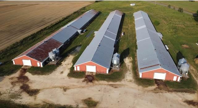 2067 County Road 44, Hartford, AL 36344 (MLS #502947) :: Team Linda Simmons Real Estate