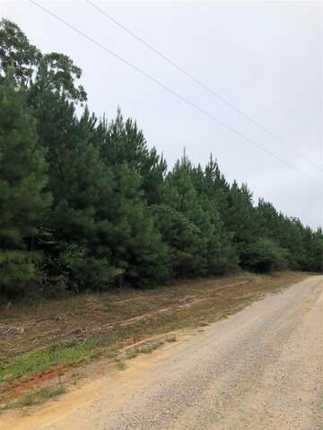 00 County Road 354, Elba, AL 36323 (MLS #503068) :: Team Linda Simmons Real Estate