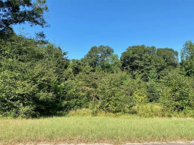 0 Riverside Drive, Dothan, AL 36303 (MLS #503143) :: Buck Realty