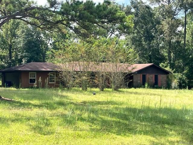 3823 Mobile Road, Greenville, AL 36037 (MLS #503303) :: Buck Realty
