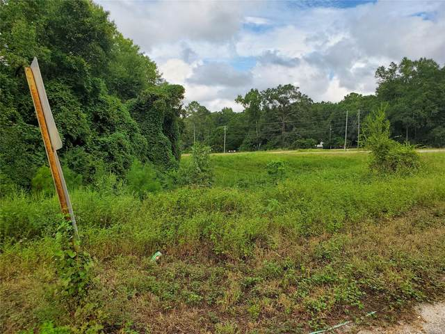 0 Highway 123, Newton, AL 36352 (MLS #503572) :: Buck Realty
