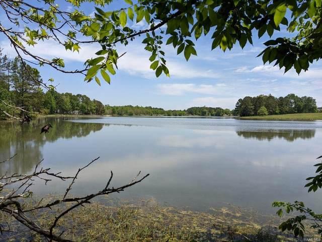 0 Lake Point Drive, Mathews, AL 36052 (MLS #503893) :: Buck Realty