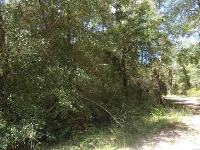 0000 Grove Road, Geneva, AL 36340 (MLS #503987) :: Team Linda Simmons Real Estate
