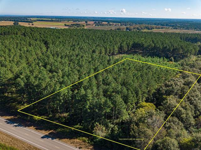 3.34 Acres Highway 167, Hartford, AL 36344 (MLS #505092) :: Team Linda Simmons Real Estate