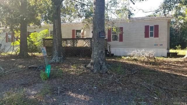 44 Private Road 1325 Road, Skipperville, AL 36374 (MLS #505435) :: Team Linda Simmons Real Estate