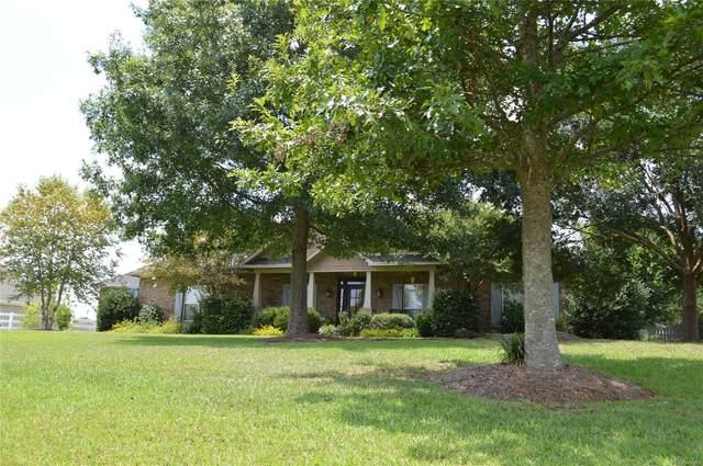 48 County Road 560 Road, Enterprise, AL 36330 (MLS #505713) :: Team Linda Simmons Real Estate