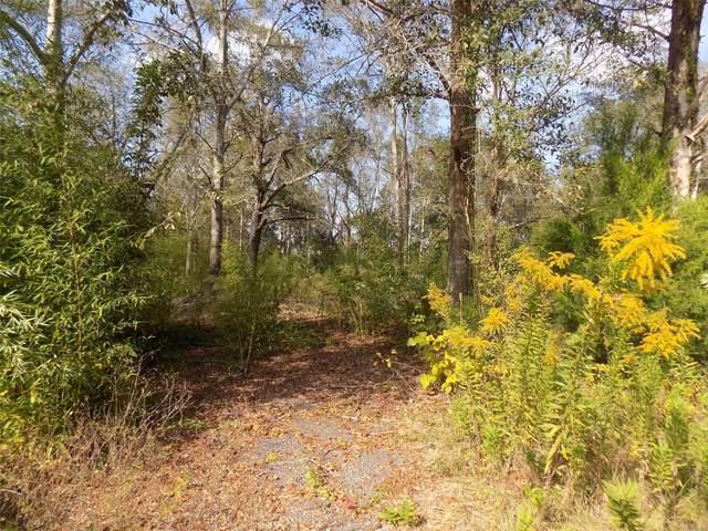 TBD N Marley Mill Road, Ozark, AL 36360 (MLS #505787) :: Team Linda Simmons Real Estate