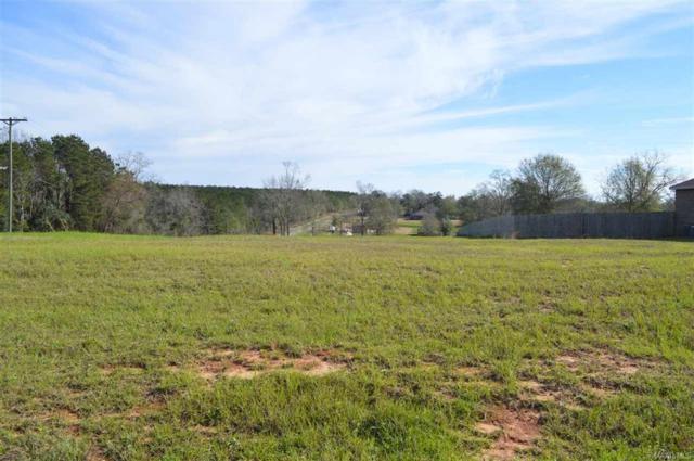 LOT 48 Coldwater Creek, Enterprise, AL 36330 (MLS #W20160047) :: Team Linda Simmons Real Estate