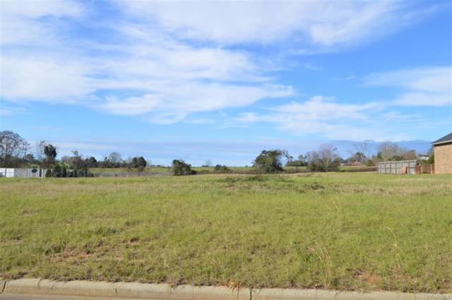 LOT 3 Coldwater Creek, Enterprise, AL 36330 (MLS #W20160049) :: Team Linda Simmons Real Estate