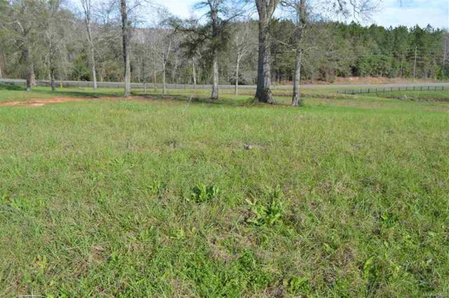 LOT 45 Coldwater Creek, Enterprise, AL 36330 (MLS #W20160079) :: Team Linda Simmons Real Estate