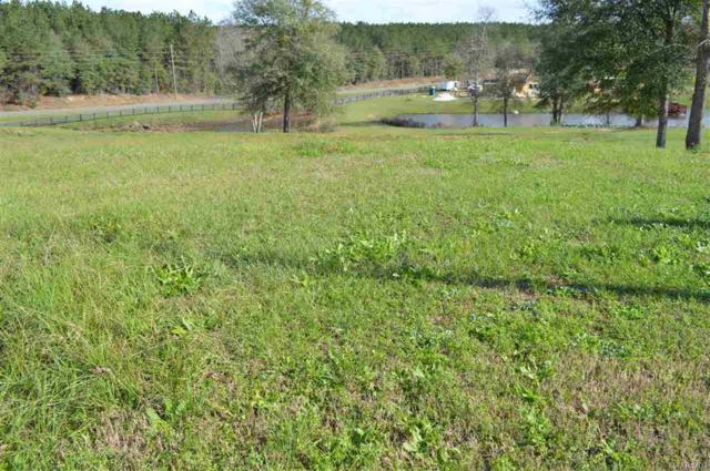 LOT 44 Coldwater Creek, Enterprise, AL 36330 (MLS #W20160080) :: Team Linda Simmons Real Estate