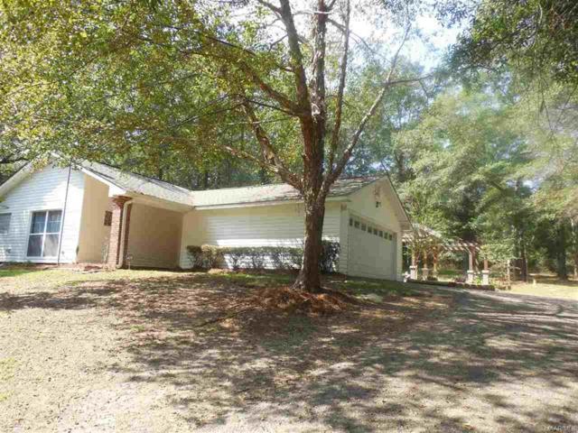 1800 Mixon School Road, Ozark, AL 36360 (MLS #W20171761) :: Team Linda Simmons Real Estate