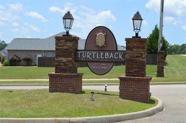 100 Turtleback Trail, Enterprise, AL 36330 (MLS #W20180067) :: Team Linda Simmons Real Estate