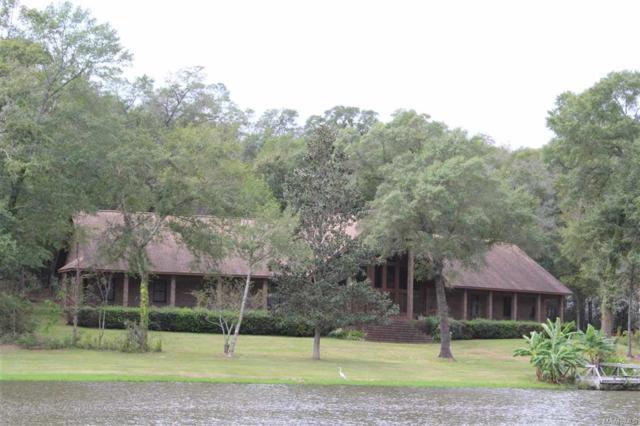 230 Georgian Terrace, Midland City, AL 36350 (MLS #W20180369) :: Team Linda Simmons Real Estate
