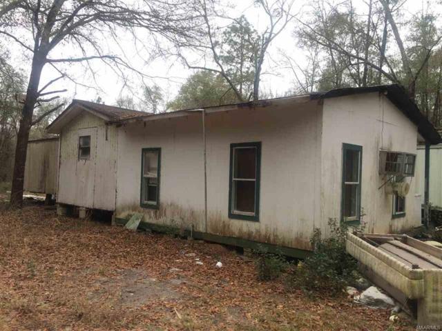 532 Pineview Lane, Geneva, AL 36477 (MLS #W20180457) :: Team Linda Simmons Real Estate
