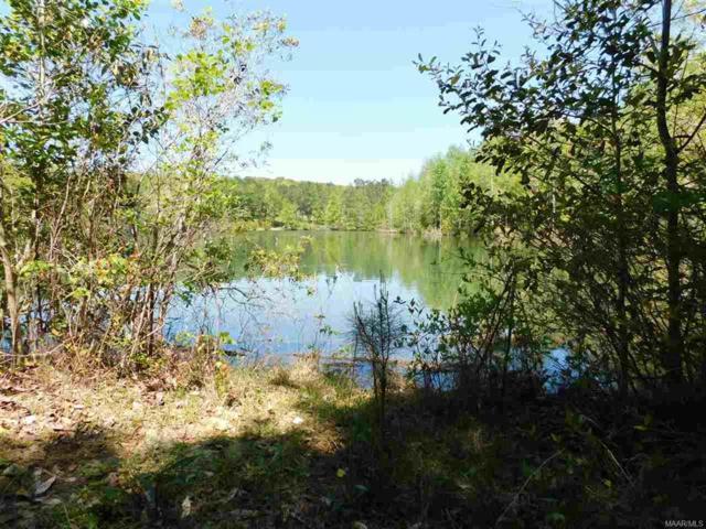0 Highway 51, Ariton, AL 36311 (MLS #W20180966) :: Team Linda Simmons Real Estate