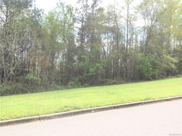 234 Macallister Ridge, Millbrook, AL 36054 (MLS #259504) :: Buck Realty