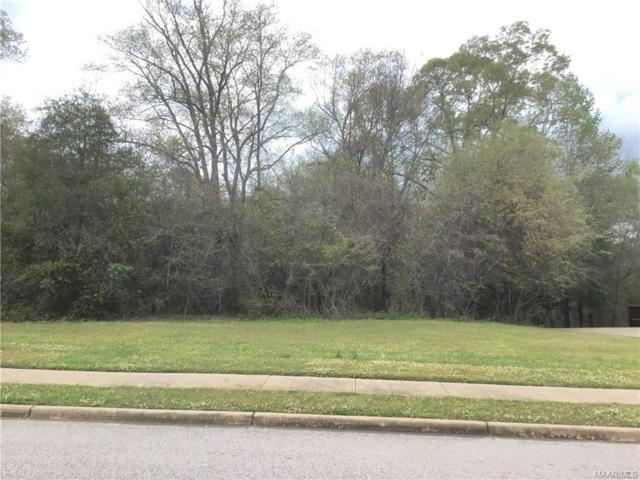 179 Macallister Ridge, Millbrook, AL 36054 (MLS #259506) :: LocAL Realty
