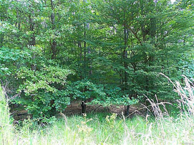 Mark Trail 2A, Wetumpka, AL 36092 (MLS #306877) :: Buck Realty