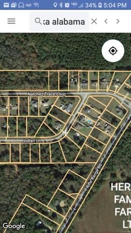 0 Natchez Trace Loop, Tallassee, AL 35025 (MLS #409360) :: Buck Realty