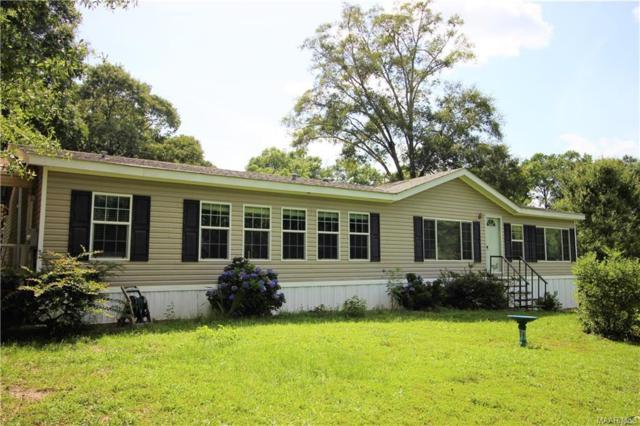 116 County Road 685 ., New Brockton, AL 36351 (MLS #436689) :: Team Linda Simmons Real Estate