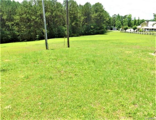 TBD Hickman Avenue, Elba, AL 36323 (MLS #436790) :: Team Linda Simmons Real Estate