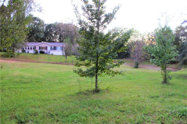 3979 County Road 617 (7.35 Acres) . 7.35 ACRES, New Brockton, AL 36351 (MLS #442246) :: Team Linda Simmons Real Estate