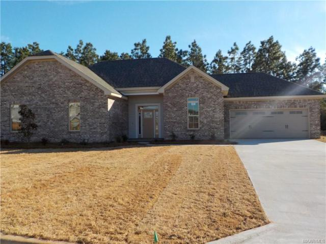107 Allisha Court, Enterprise, AL 36330 (MLS #445693) :: Team Linda Simmons Real Estate