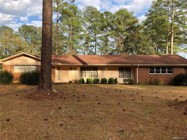 1195 Reese Avenue, Elba, AL 36323 (MLS #448206) :: Team Linda Simmons Real Estate