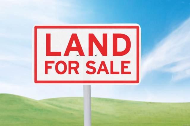 0 Spring Lake Boulevard, Clanton, AL 35046 (MLS #457025) :: LocAL Realty