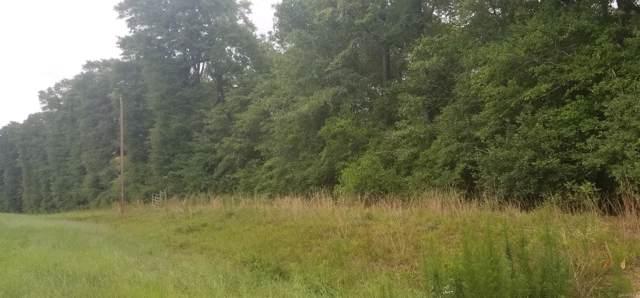 TBD County Road 13 ., Ozark, AL 36360 (MLS #459246) :: Team Linda Simmons Real Estate