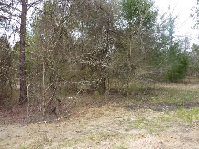 Lot 4 Doe Run Court, Pike Road, AL 36064 (MLS #461370) :: Buck Realty