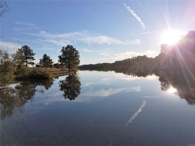 0 Chesson Hill Drive, Fitzpatrick, AL 36029 (MLS #476442) :: LocAL Realty