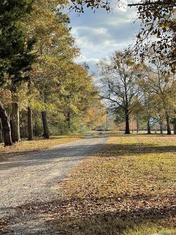 1915 County Road 721, Enterprise, AL 36330 (MLS #485510) :: Team Linda Simmons Real Estate