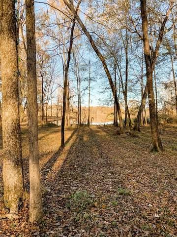 Lot 10 Shadow Creek Loop, Camden, AL 36726 (MLS #485968) :: Buck Realty