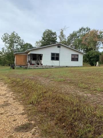 5354 Lambert Road, Red Level, AL 36474 (MLS #463582) :: Team Linda Simmons Real Estate