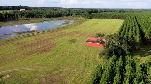 241 Garrett Drive, Daleville, AL 36322 (MLS #496203) :: Team Linda Simmons Real Estate