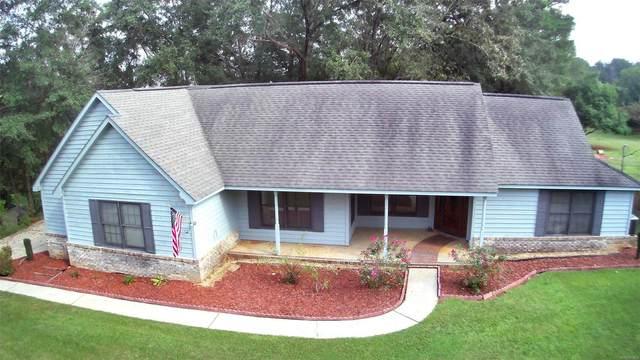 132 Lakeside Drive, Enterprise, AL 36330 (MLS #501323) :: Buck Realty