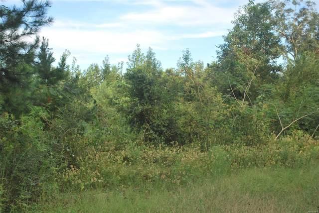 0 County Road 156 Road, Enterprise, AL 36330 (MLS #503656) :: Team Linda Simmons Real Estate