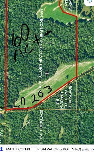 0 County Road 202 Road, New Brockton, AL 36079 (MLS #433622) :: Team Linda Simmons Real Estate