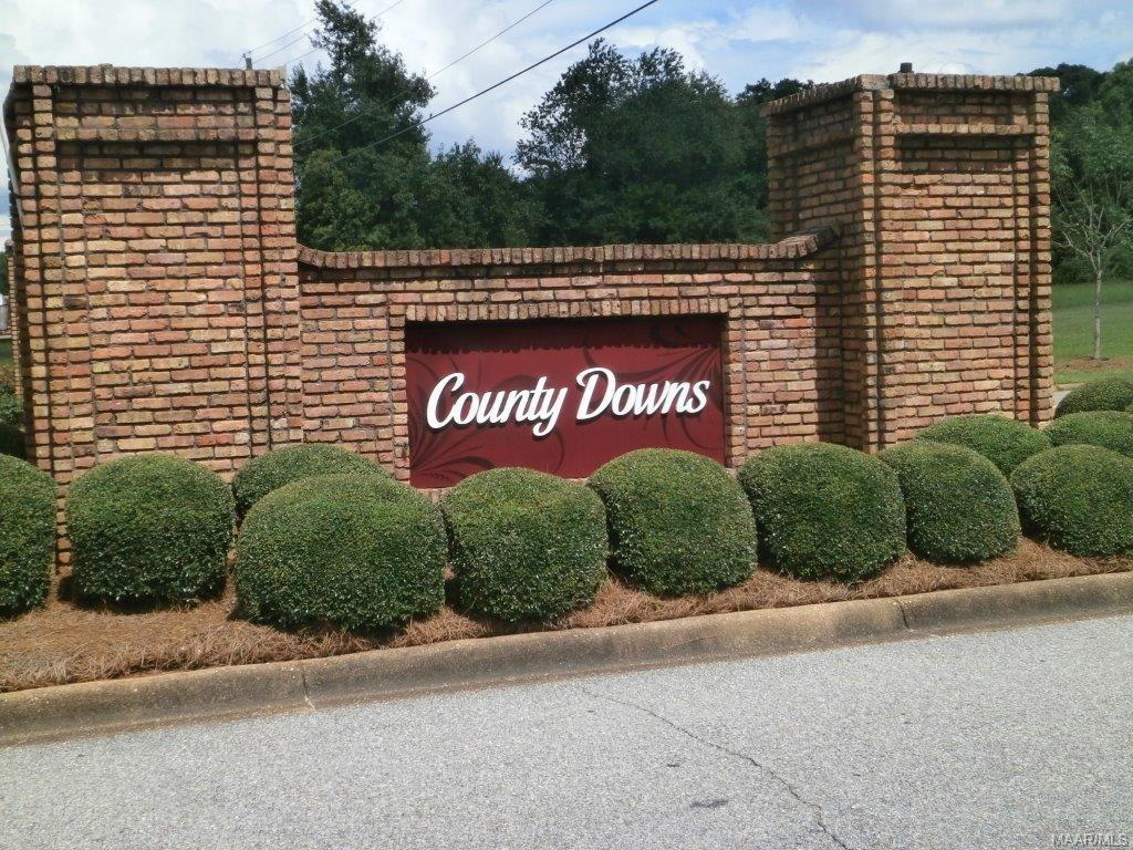 700 County Downs Road - Photo 1
