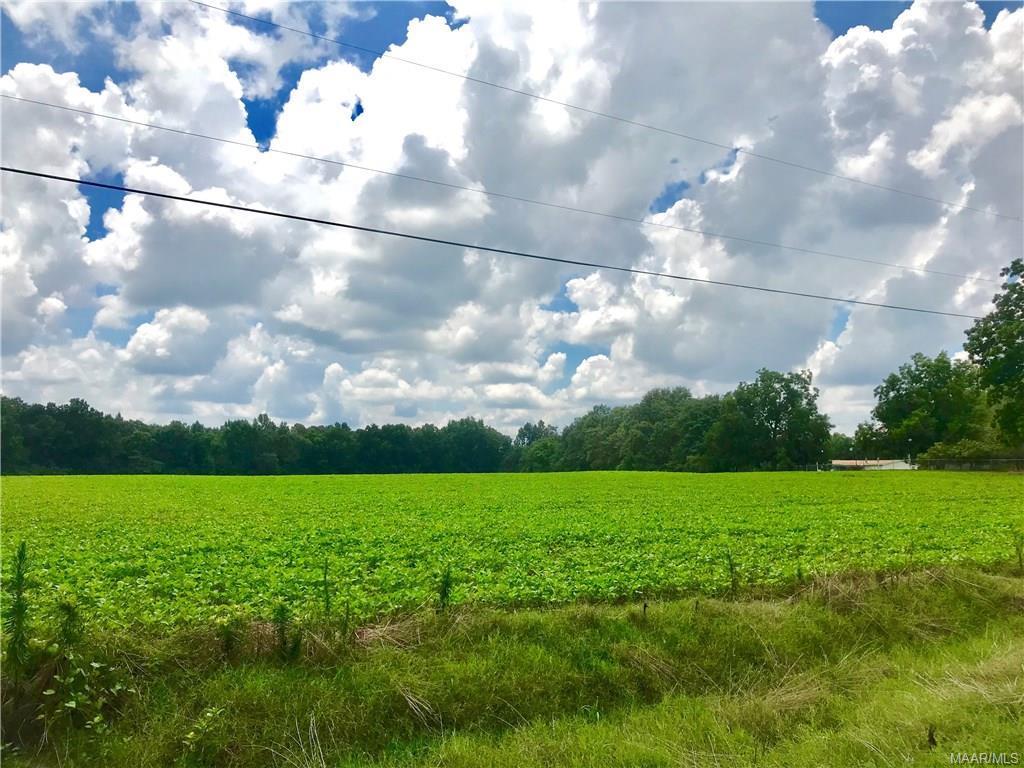 0 Rice Road - Photo 1