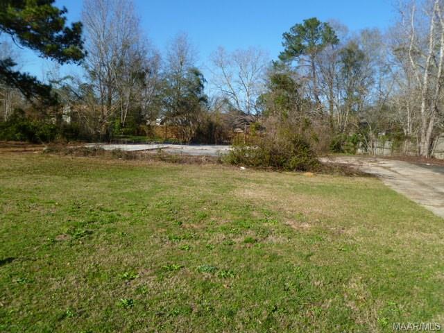 111 Richard Street, Daleville, AL 36322 (MLS #445628) :: Team Linda Simmons Real Estate